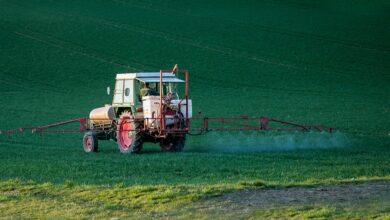 basf-herbicida-ervas-daninhas