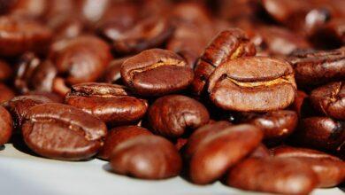 café-controle-pragas-mapa