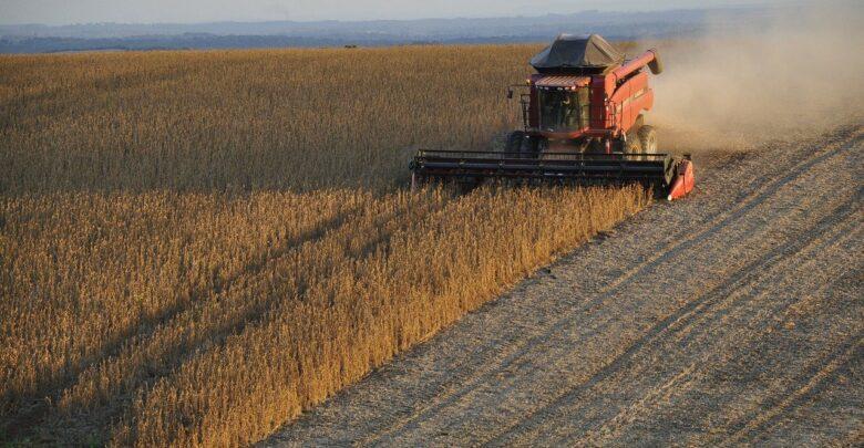 alta-glifosato-custo-produção-agricultores-brasileiros