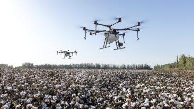 aplicação-biológicos-drones-ganha-força