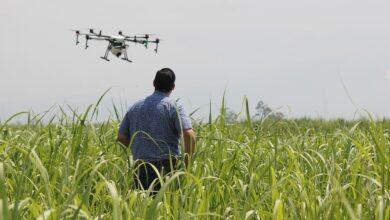 drones-bons-resultados-aplicação-defensivos