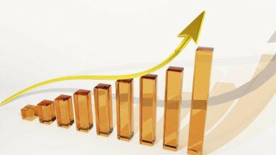 Aumento-da-procura-por-Biodefensivos-impulsiona-Novozymes