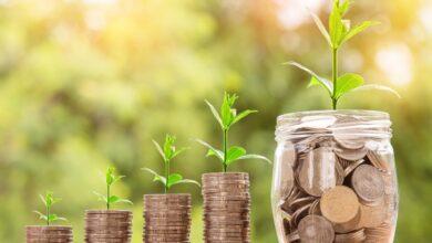 Empresa-Vittia-estreia-na-bolsa-com-aumento-de-25%-nas-ações