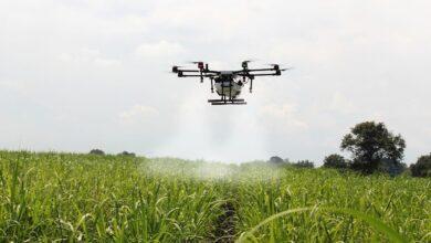 mapa-regulamentou-drones-para-atividades-agricolas