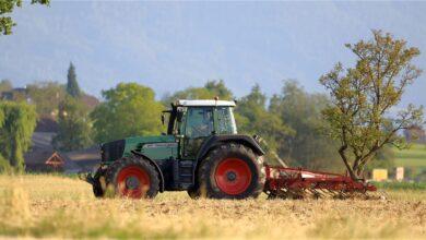 apos-tres-anos-agricultores-ainda-enfrentam-dificuldades-para-substituir-paraquate